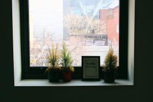 """A photo of a window taken from the inside, looking out. On the ledge are three potted plants and a picture frame with text inside """"breathe, it'll be okay"""""""