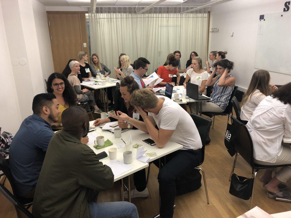 International Initiative for Mental Health Leadership (IIMHL) Working Group