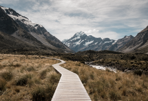 A boardwalk path winding through an open meadow with snow capped mountains in the background. The sky is bright blue with lots of clouds.