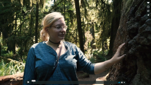 Photograph of a person with long blonde hair, wearing clear rimmed glasses, a blue t-shirt, and a black choker necklace. Their hand is stretched out, resting on a tree trunk. In the background is a green forest at midday and the sun is shining on the right half of the persons figure.