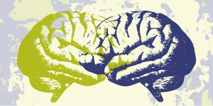 A graphic with an illustration of two brains facing each other and overlapping. The brain on the left is green and the right is dark purple.In the background is a purple and green graphic with rough texture.