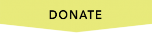 Lime green donate button. Click here to donate to Stella's Place.