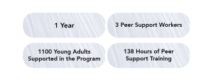 """4 small purple texture boxes with statistics listed in each """"1 year"""" """"3 Peer Support Workers"""" """"1100 Young Adults Supported in the Program"""" and """"138 Hours of Peer Support Training"""""""